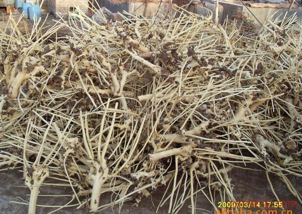 棉花根等原材料制作