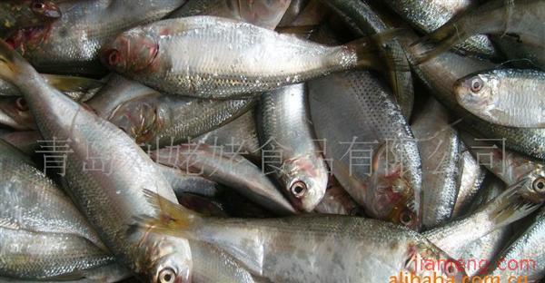 15家 公司名称: 青岛刘姥姥食品有限公司 公司地址: 山东 胶南市